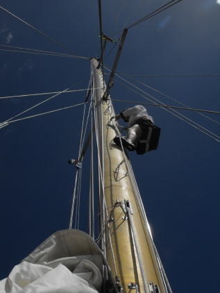 Up the mainmast